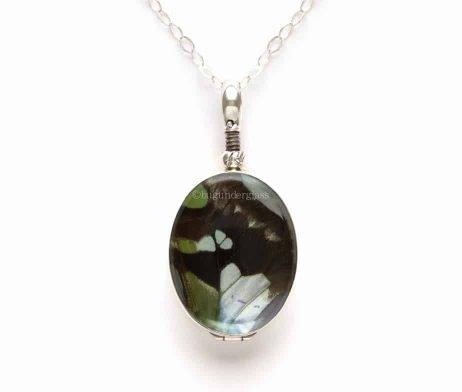 graphium weiskei jewelry