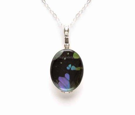 purple butterfly wing jewelry