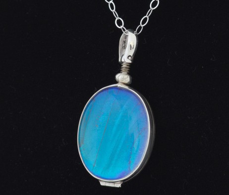 blue morpho butterfly wing necklace