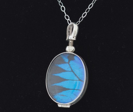 papilio ulysses butterfly wing necklace