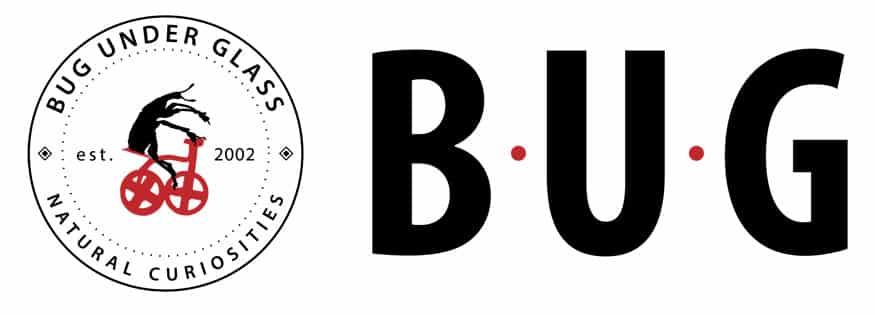 logo-bugunderglass-banner