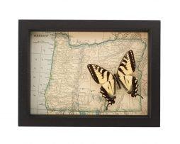 framed Oregon map