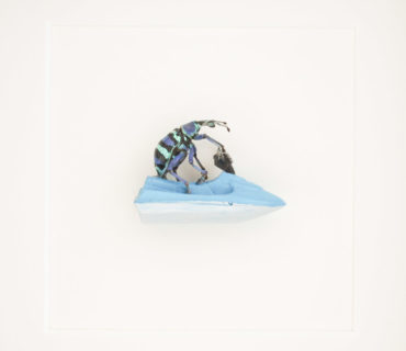 baywatch beetle