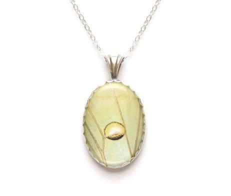 real luna moth jewelry