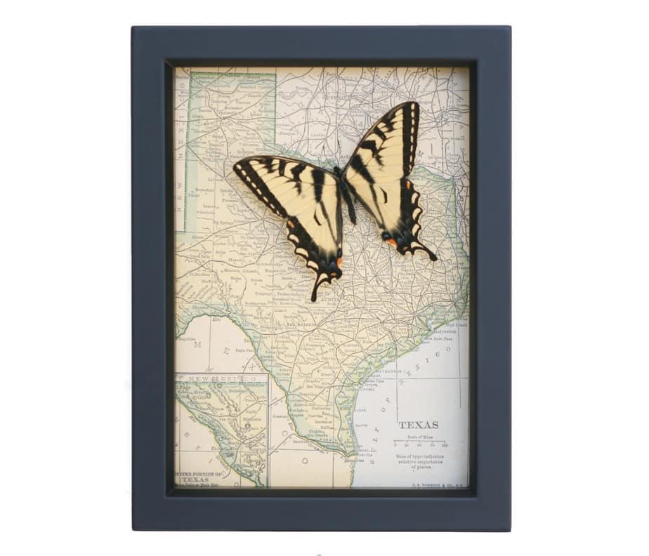 framed texas map